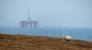 Oil rig and sheep